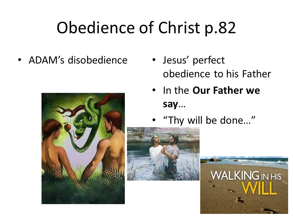 """Obedience of Christ p.82 ADAM's disobedience Jesus' perfect obedience to his Father In the Our Father we say… """"Thy will be done…"""""""