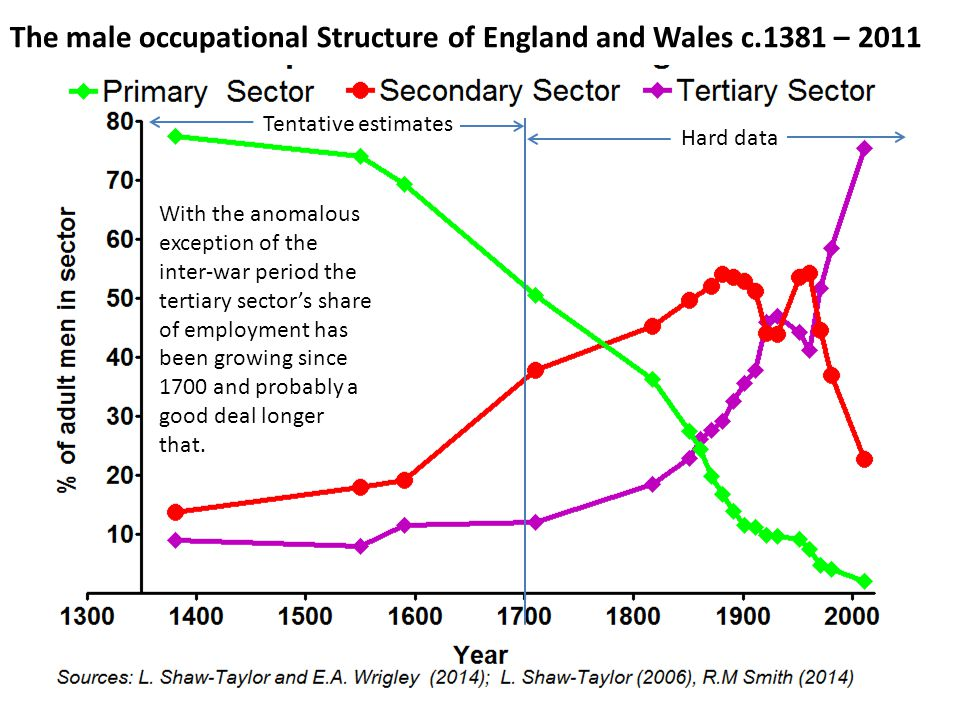 The male occupational Structure of England and Wales c.1381 – 2011 With the exception of the C20th interwar period, the tertiary sector has been growing as a share of employment since 1700 and probably longer Hard data Tentative estimates With the anomalous exception of the inter-war period the tertiary sector's share of employment has been growing since 1700 and probably a good deal longer that.