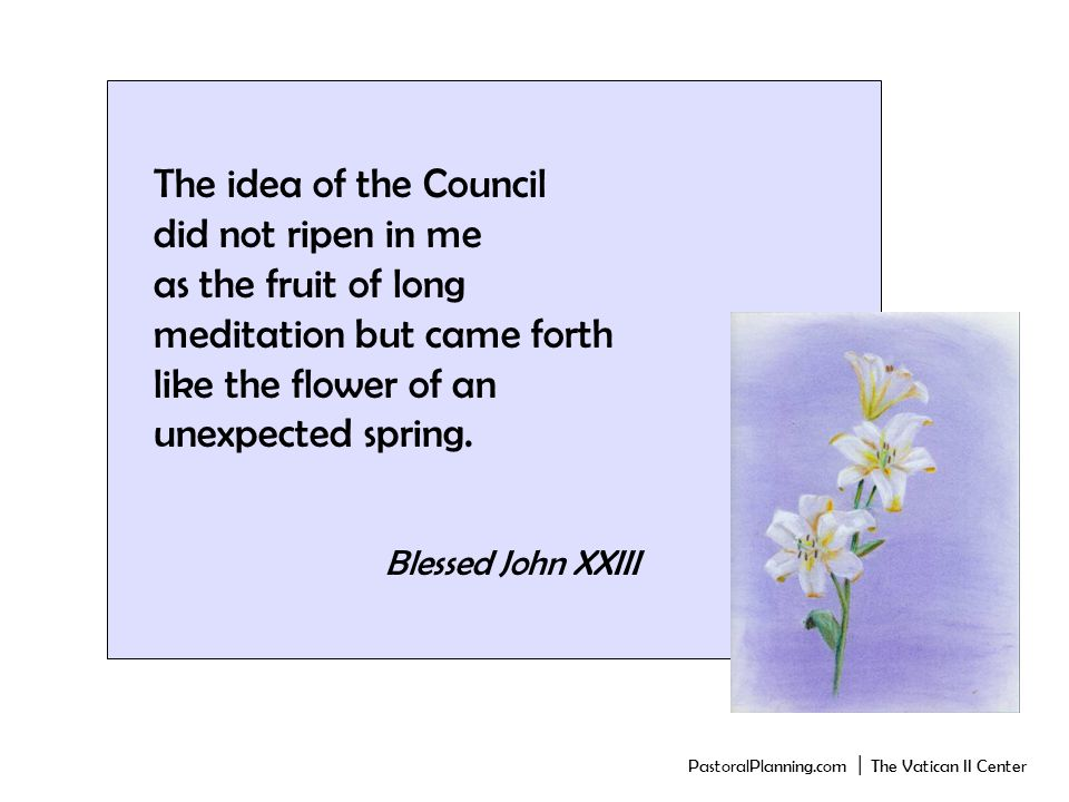The idea of the Council did not ripen in me as the fruit of long meditation but came forth like the flower of an unexpected spring.