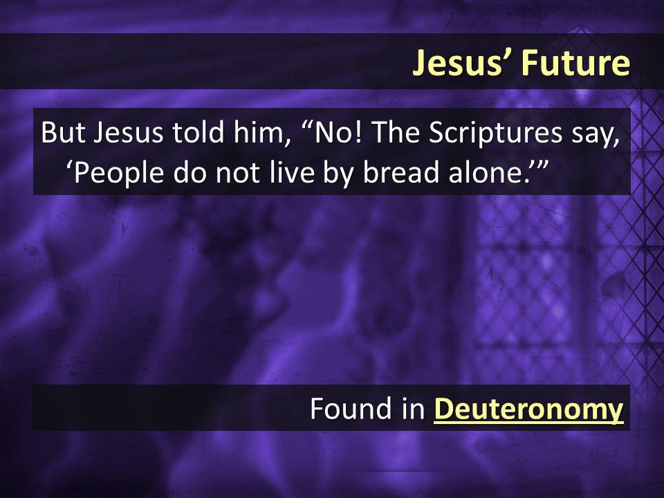 Jesus' Future Jesus' Future But Jesus told him, No.