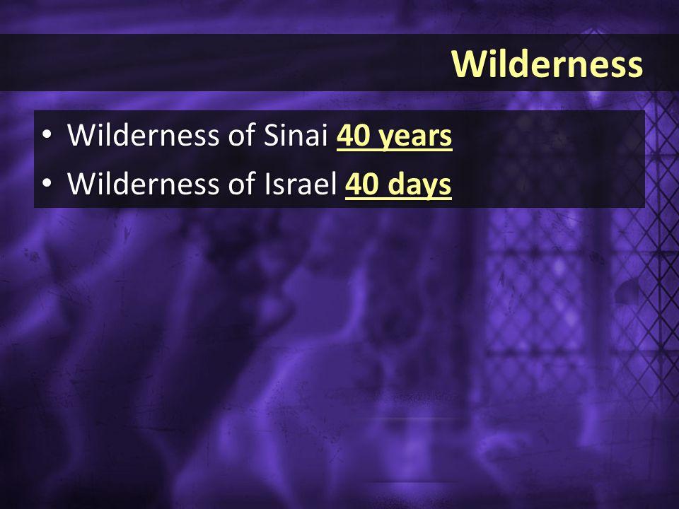 Wilderness Wilderness Wilderness of Sinai 40 years Wilderness of Sinai 40 years Wilderness of Israel 40 days Wilderness of Israel 40 days