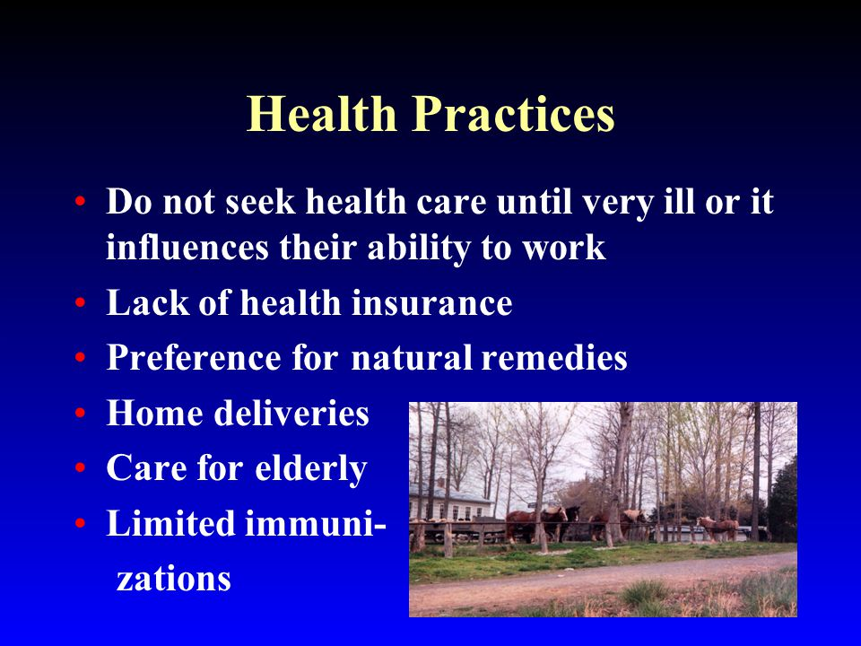 Health Practices Do not seek health care until very ill or it influences their ability to work Lack of health insurance Preference for natural remedies Home deliveries Care for elderly Limited immuni- zations