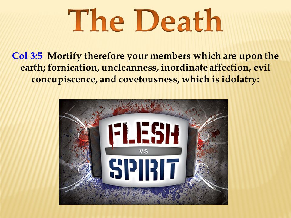 Rom 6:4 Therefore we are buried with him by baptism into death: that like as Christ was raised up from the dead by the glory of the Father, even so we also should walk in newness of life.