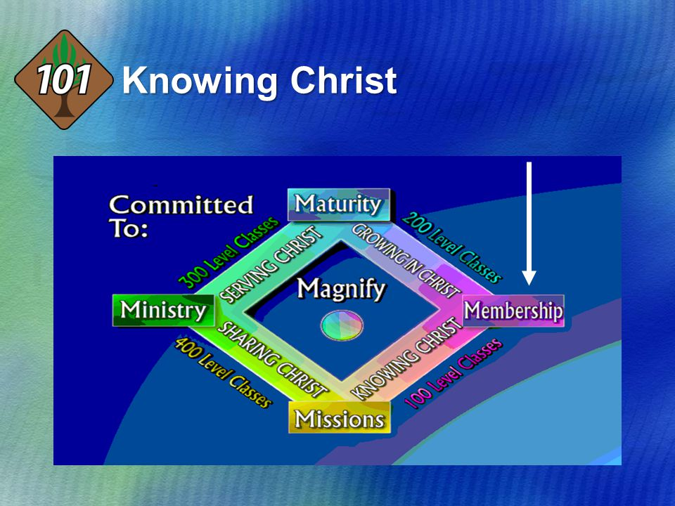 I.Why Should I Be Baptised. 1.To follow the example set by JESUS.