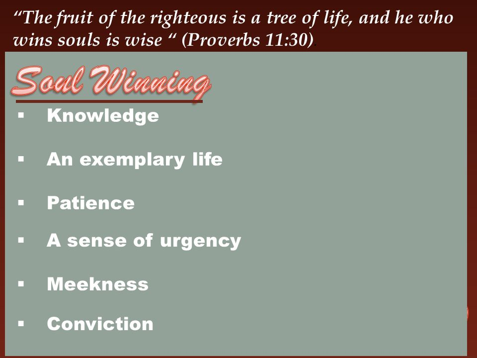 The fruit of the righteous is a tree of life, and he who wins souls is wise (Proverbs 11:30).