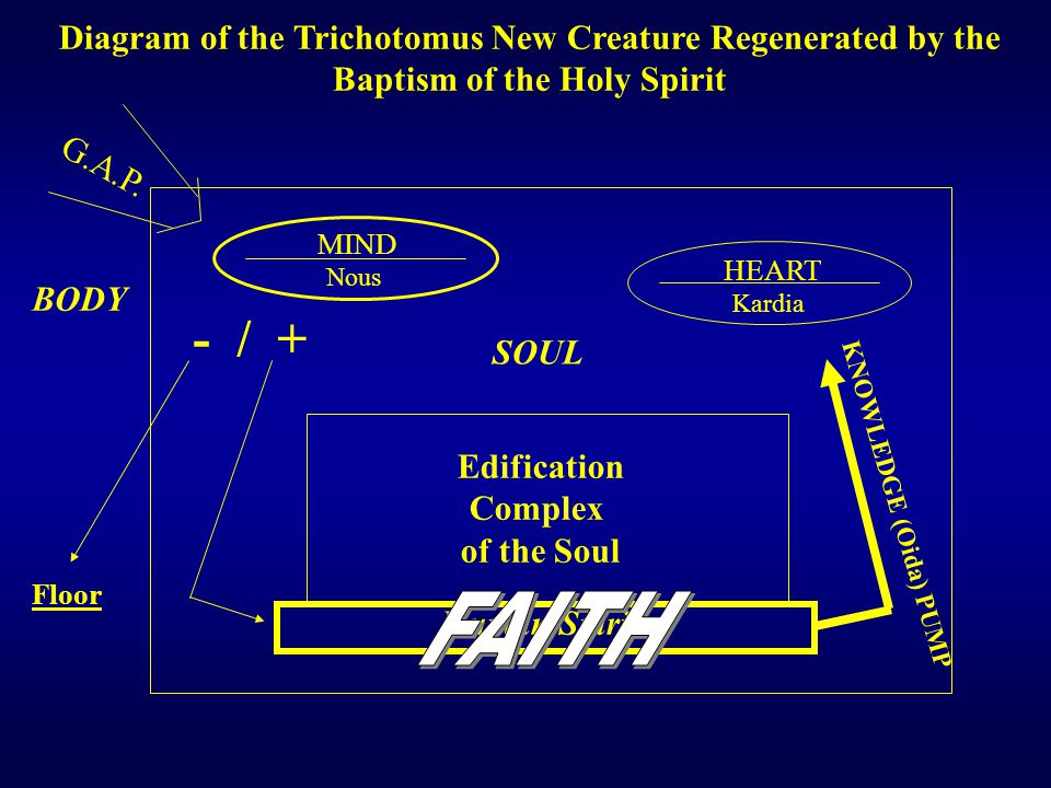 G.A.P. Nous MIND HEART Kardia - / + Human Spirit Edification Complex of the Soul SOUL Diagram of the Trichotomus New Creature Regenerated by the Bapti
