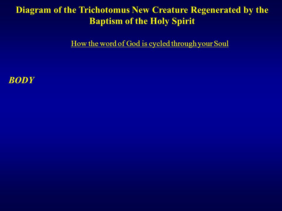 SOUL Diagram of the Trichotomus New Creature Regenerated by the Baptism of the Holy Spirit BODY How the word of God is cycled through your Soul