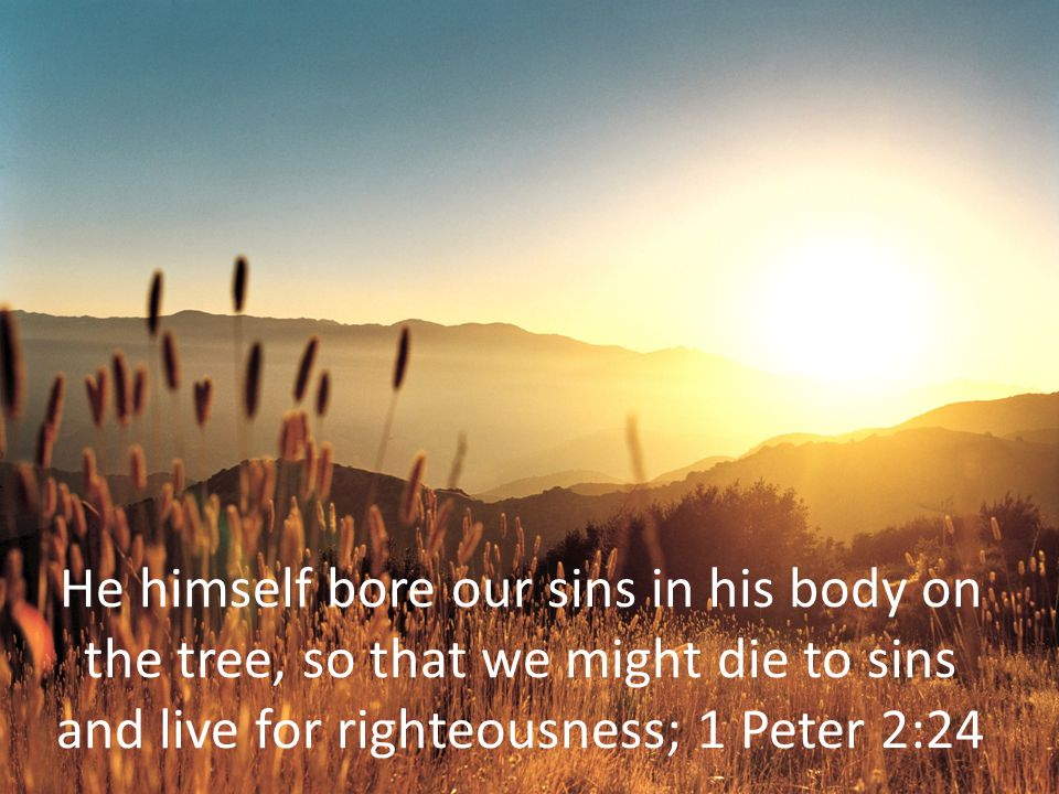We implore you on Christ s behalf: Be reconciled to God.