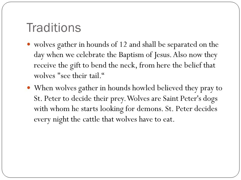 Traditions wolves gather in hounds of 12 and shall be separated on the day when we celebrate the Baptism of Jesus.