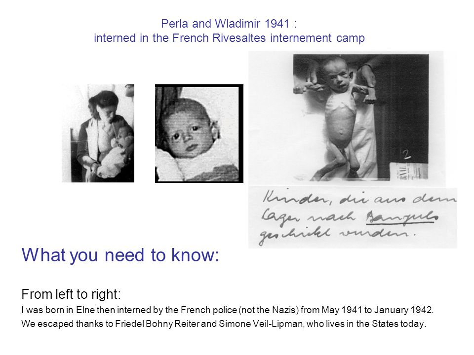 Perla and Wladimir 1941 : interned in the French Rivesaltes internement camp What you need to know: From left to right: I was born in Elne then interned by the French police (not the Nazis) from May 1941 to January 1942.