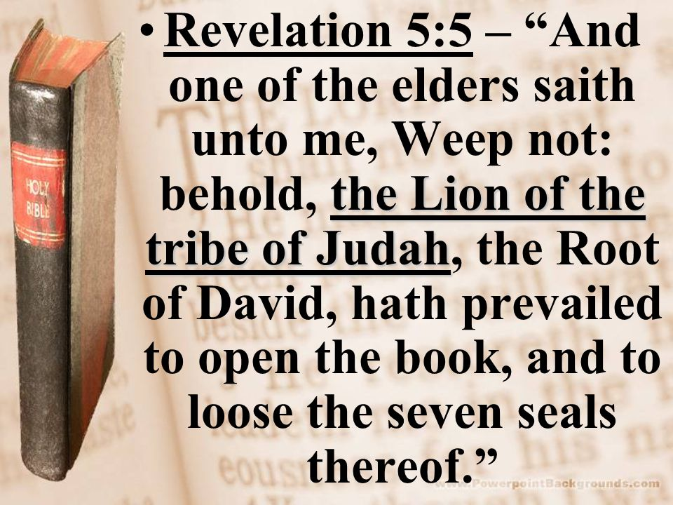 the Lion of the tribe of JudahRevelation 5:5 – And one of the elders saith unto me, Weep not: behold, the Lion of the tribe of Judah, the Root of David, hath prevailed to open the book, and to loose the seven seals thereof.