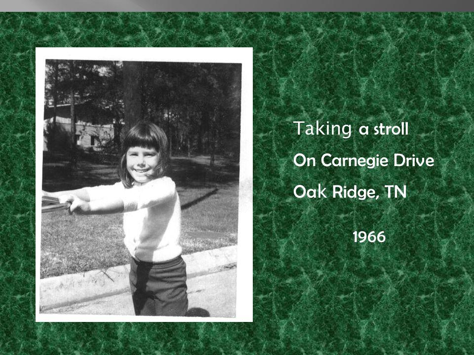 Taking a stroll On Carnegie Drive Oa k Ridge, TN 1966