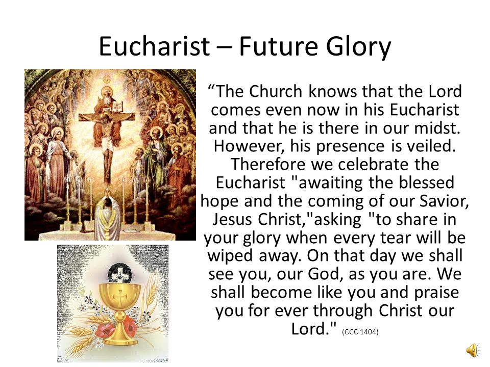Eucharist – Holy Mass (Missa)  Faithful are sent forth (missio) (CCC 1332)  We are called to live what we receive - to go and do the same.