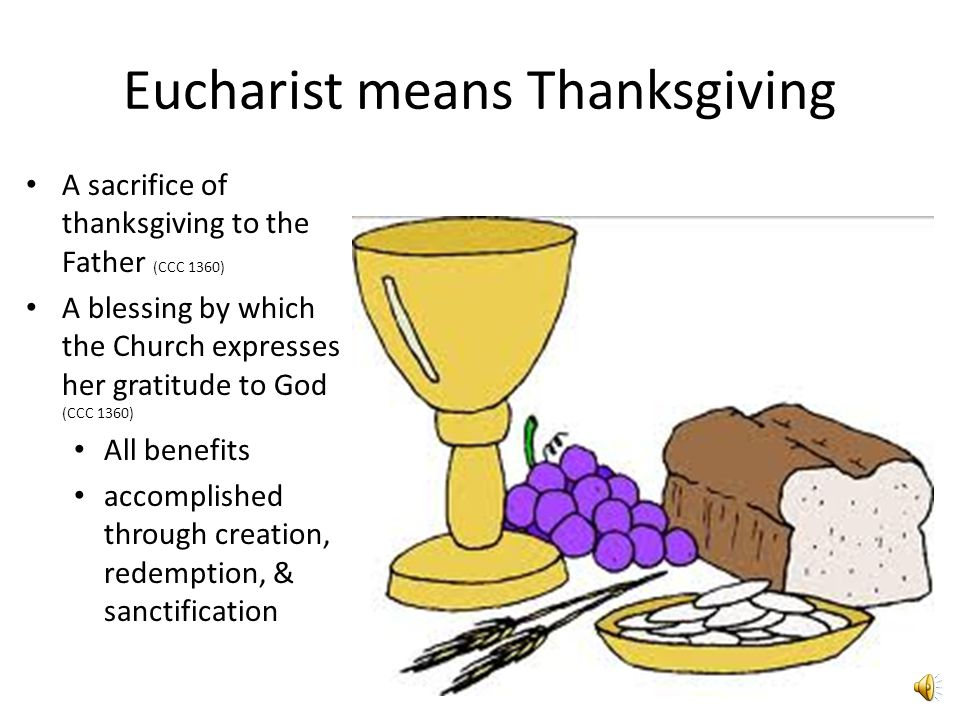 Eucharist means Thanksgiving A sacrifice of thanksgiving to the Father (CCC 1360) A blessing by which the Church expresses her gratitude to God (CCC 1360) All benefits accomplished through creation, redemption, & sanctification
