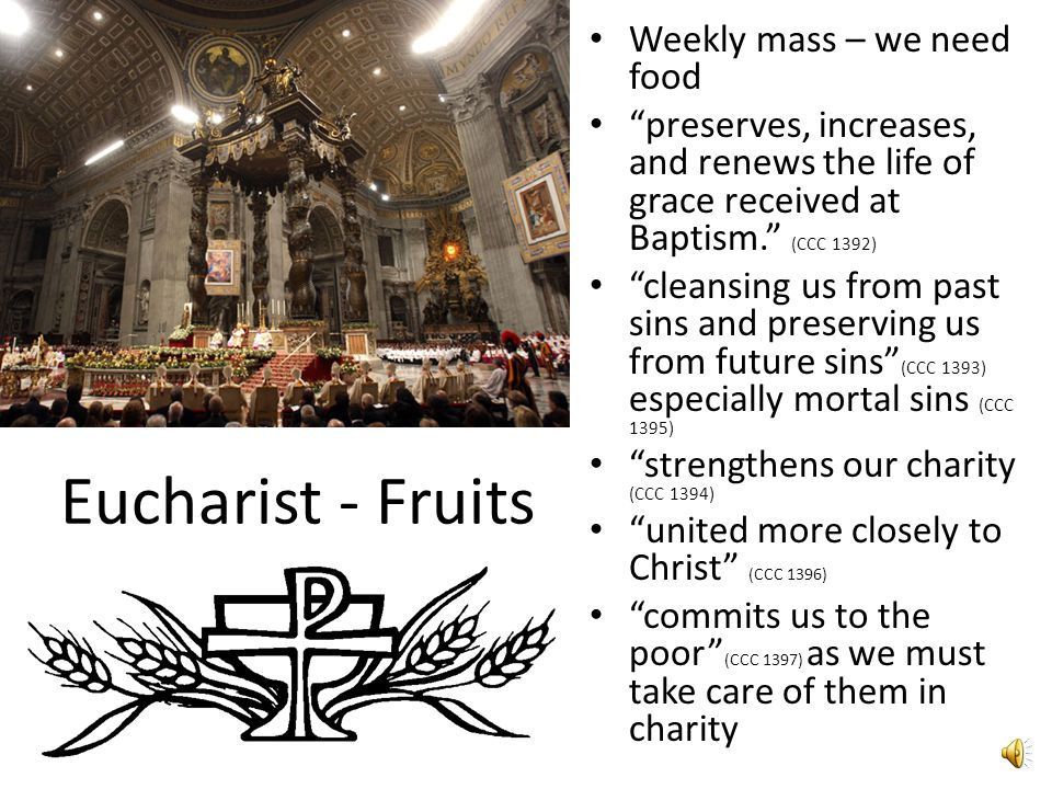 Eucharist - Fruits Weekly mass – we need food preserves, increases, and renews the life of grace received at Baptism. (CCC 1392) cleansing us from past sins and preserving us from future sins (CCC 1393) especially mortal sins (CCC 1395) strengthens our charity (CCC 1394) united more closely to Christ (CCC 1396) commits us to the poor (CCC 1397) as we must take care of them in charity