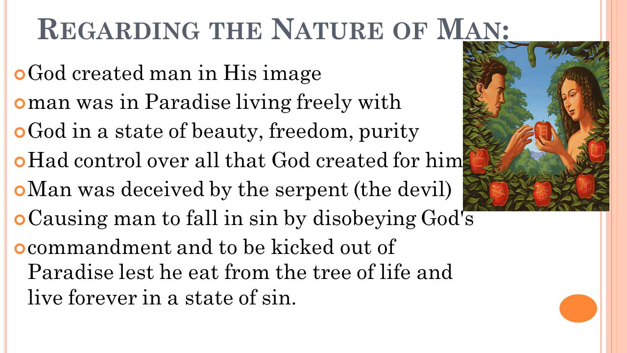 R EGARDING THE N ATURE OF M AN : God created man in His image man was in Paradise living freely with God in a state of beauty, freedom, purity Had control over all that God created for him.