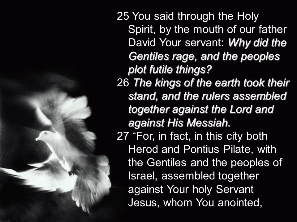 Why did the Gentiles rage, and the peoples plot futile things? 25 You said through the Holy Spirit, by the mouth of our father David Your servant: Why