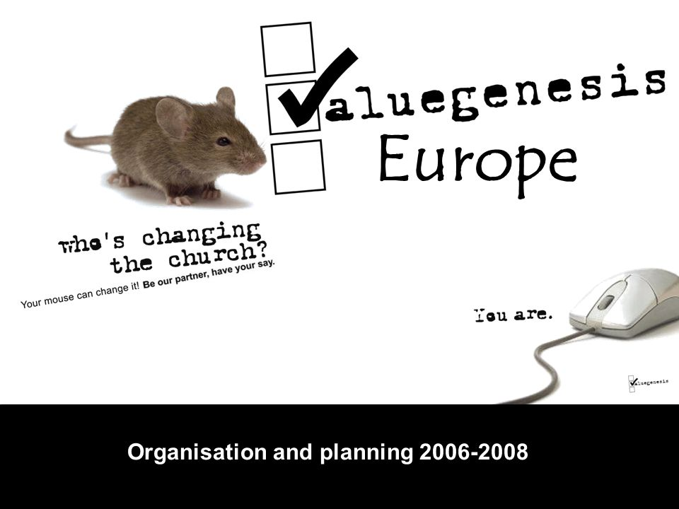 Europe Organisation and planning 2006-2008