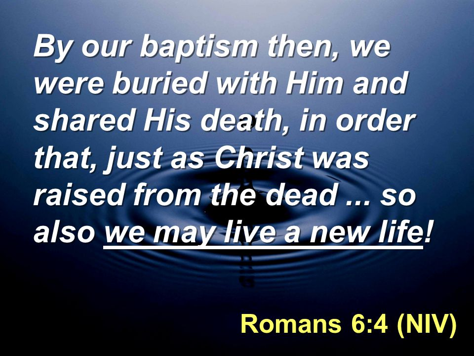By our baptism then, we were buried with Him and shared His death, in order that, just as Christ was raised from the dead...