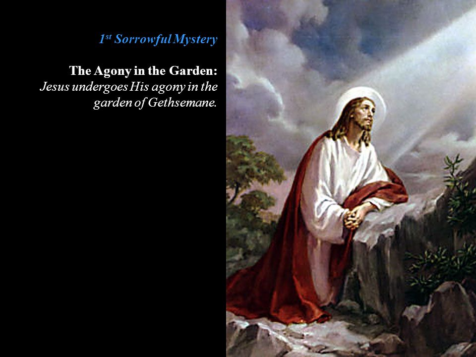1 st Sorrowful Mystery The Agony in the Garden: Jesus undergoes His agony in the garden of Gethsemane.