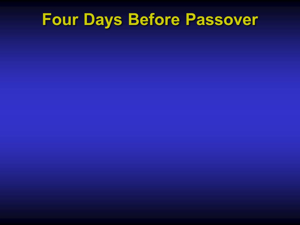 Four Days Before Passover