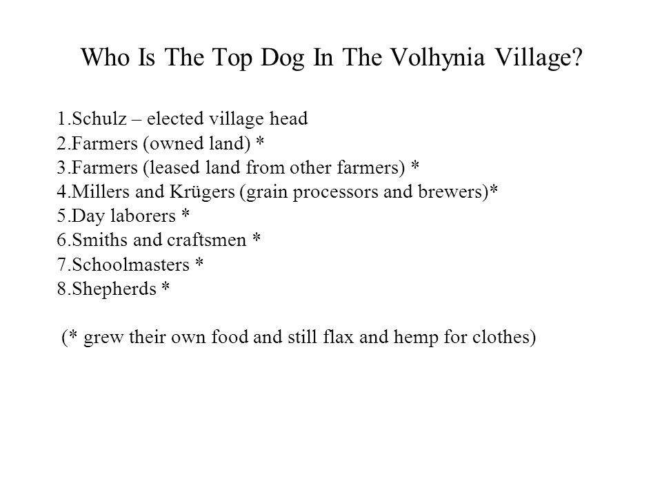 Who Is The Top Dog In The Volhynia Village.