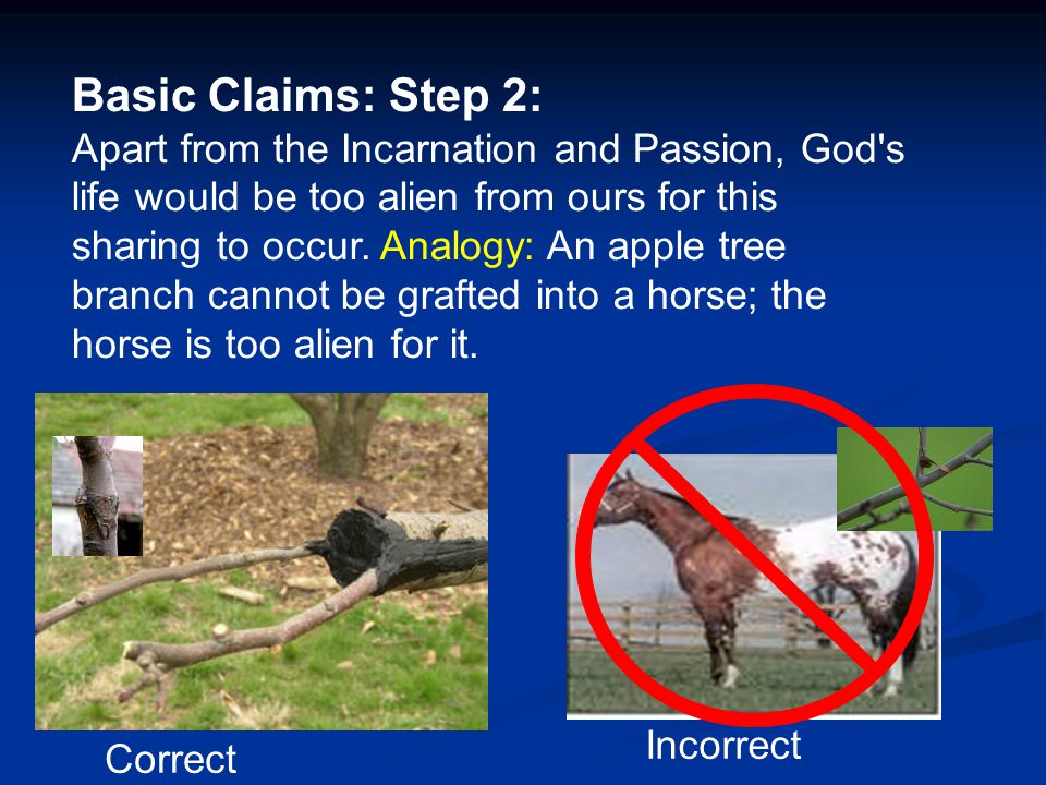 Basic Claims: Step 2: Apart from the Incarnation and Passion, God's life would be too alien from ours for this sharing to occur. Analogy: An apple tre