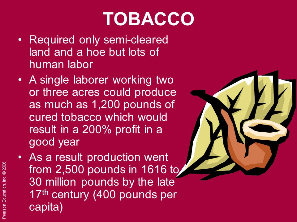 Pearson Education, Inc. © 2006 TOBACCO Required only semi-cleared land and a hoe but lots of human labor A single laborer working two or three acres c