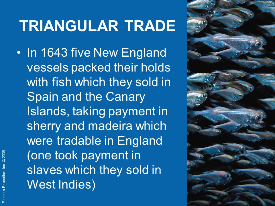 Pearson Education, Inc. © 2006 TRIANGULAR TRADE In 1643 five New England vessels packed their holds with fish which they sold in Spain and the Canary