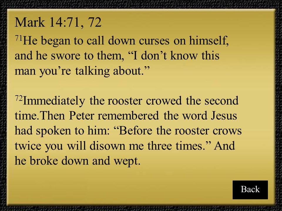 """71 He began to call down curses on himself, and he swore to them, """"I don't know this man you're talking about."""" 72 Immediately the rooster crowed the"""