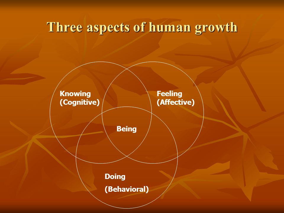 Knowing (Cognitive) Feeling (Affective) Doing (Behavioral) Being Three aspects of human growth