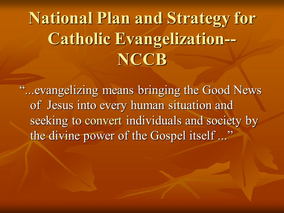 """National Plan and Strategy for Catholic Evangelization-- NCCB """"...evangelizing means bringing the Good News of Jesus into every human situation and se"""