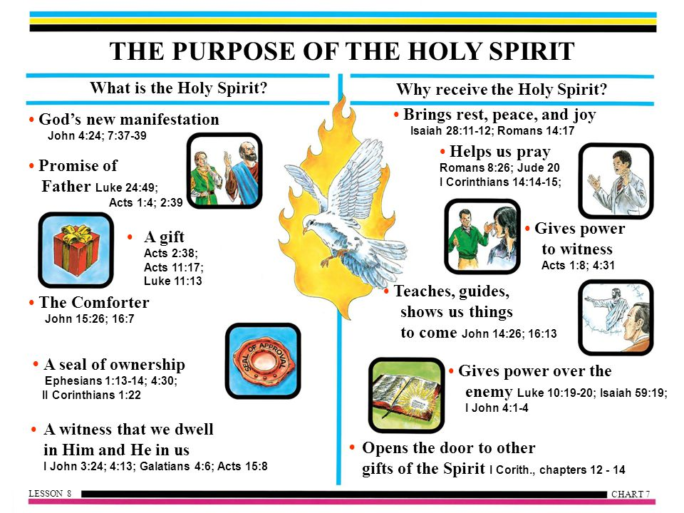 THE PURPOSE OF THE HOLY SPIRIT What is the Holy Spirit.