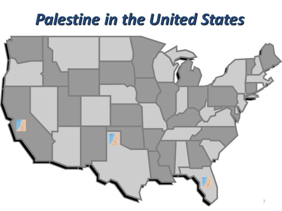 Palestine in the United States 7