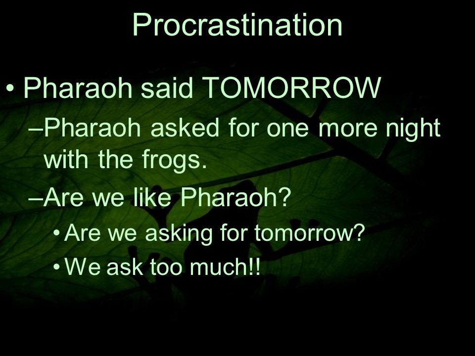8 Pharaoh said TOMORROW –P–Pharaoh asked for one more night with the frogs.