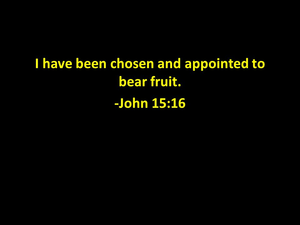 I have been chosen and appointed to bear fruit. -John 15:16