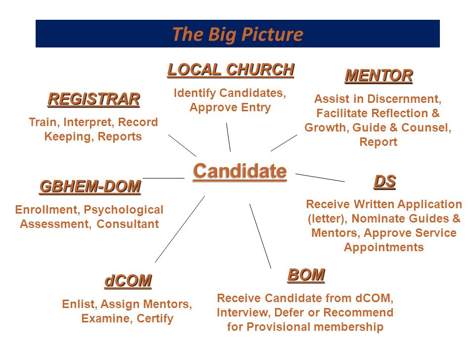 The Big Picture MENTOR Assist in Discernment, Facilitate Reflection & Growth, Guide & Counsel, Report DS Receive Written Application (letter), Nominat