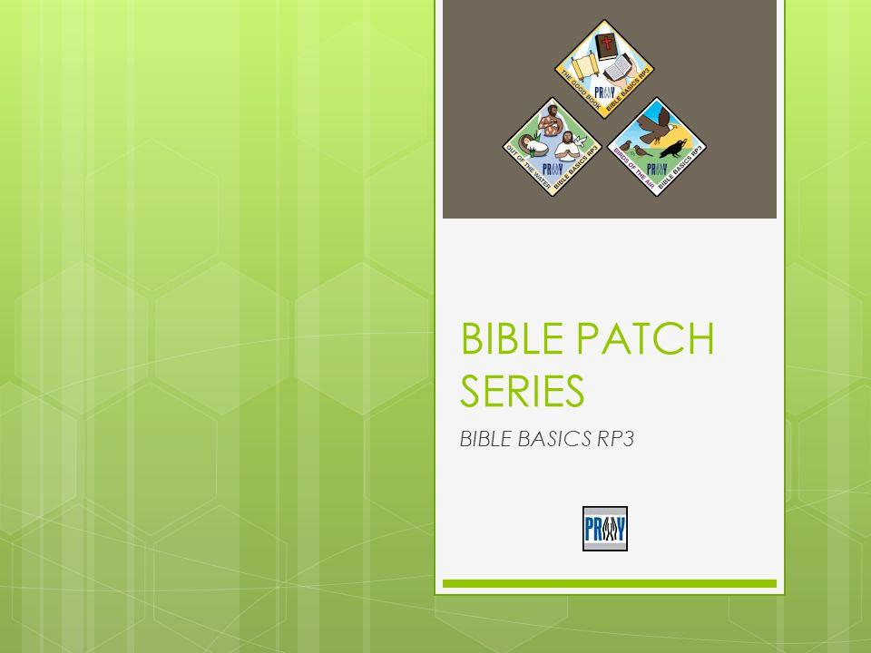 BIBLE PATCH SERIES BIBLE BASICS RP3
