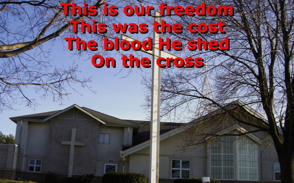 This is our freedom This was the cost The blood He shed On the cross This is our freedom This was the cost The blood He shed On the cross