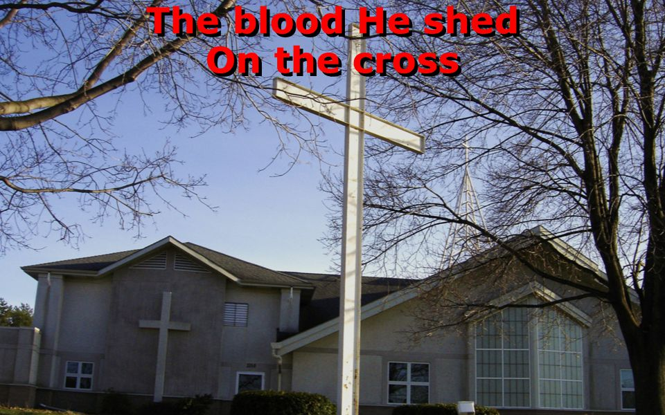 The blood He shed On the cross The blood He shed On the cross