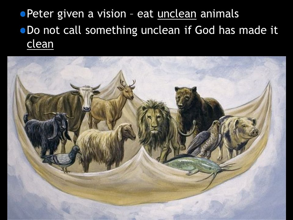 Peter given a vision – eat unclean animals Do not call something unclean if God has made it clean