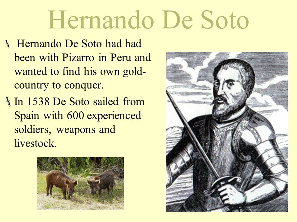 Hernando De Soto  Hernando De Soto had had been with Pizarro in Peru and wanted to find his own gold- country to conquer.  In 1538 De Soto sailed fr