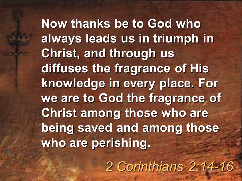 Now thanks be to God who always leads us in triumph in Christ, and through us diffuses the fragrance of His knowledge in every place.