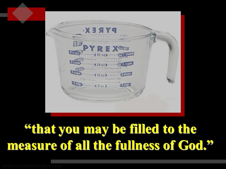 that you may be filled to the measure of all the fullness of God. www.turnbacktogod.com