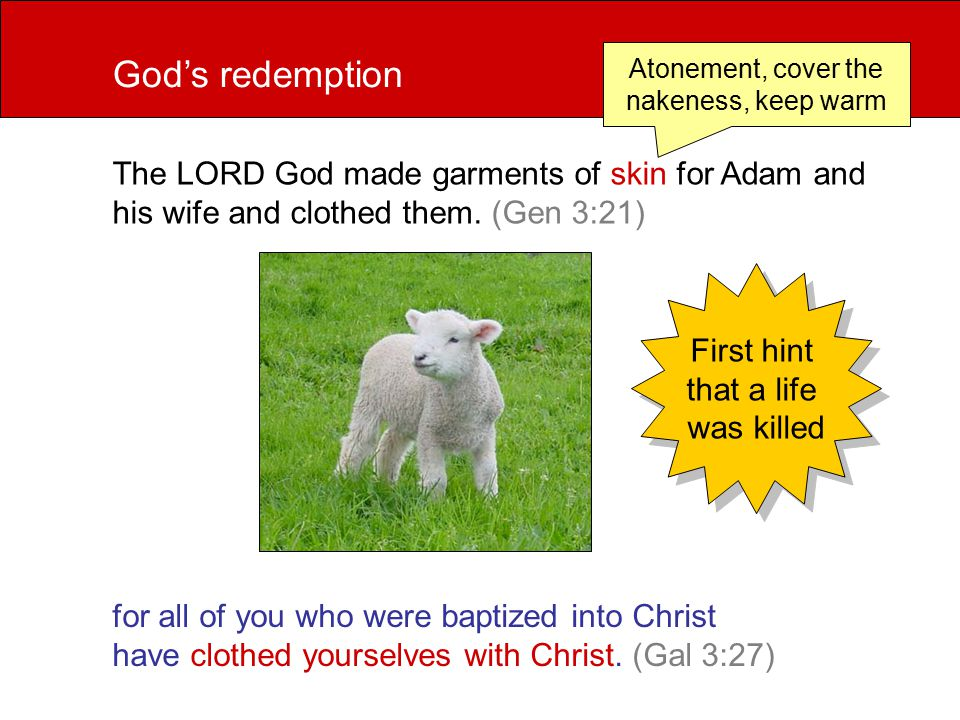 for all of you who were baptized into Christ have clothed yourselves with Christ.