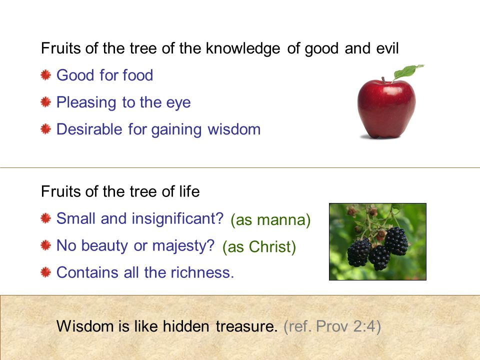 Wisdom is like hidden treasure. (ref.