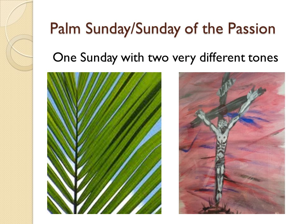 Palm Sunday/Sunday of the Passion One Sunday with two very different tones