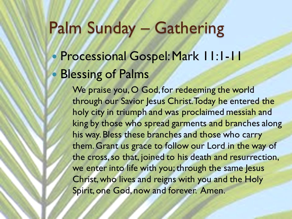 Palm Sunday – Gathering Processional Gospel: Mark 11:1-11 Blessing of Palms We praise you, O God, for redeeming the world through our Savior Jesus Christ.