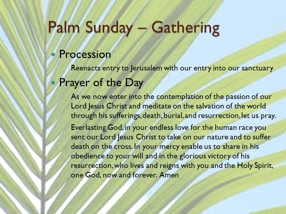 Palm Sunday – Gathering Procession Reenacts entry to Jerusalem with our entry into our sanctuary Prayer of the Day As we now enter into the contemplat