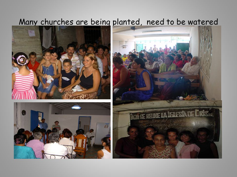 Many churches are being planted, need to be watered